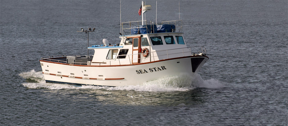 sea-star-boat